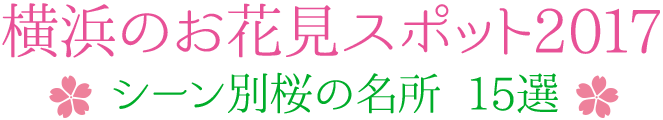 横浜のお花見スポット2017 〜シーン別桜の名所 15選〜
