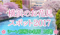 横浜のお花見スポット2017 〜シーン別桜の名所15選〜 [はまれぽ.com]