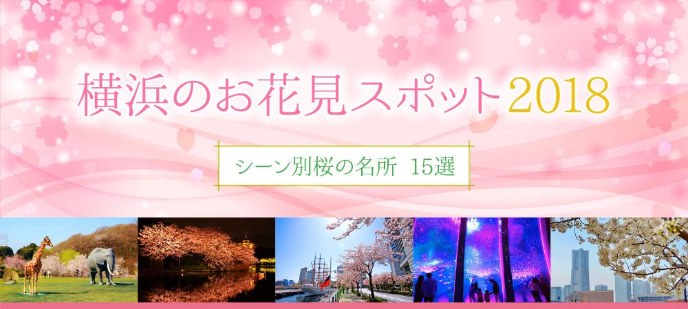横浜のお花見スポット2018 〜シーン別桜の名所 15選〜