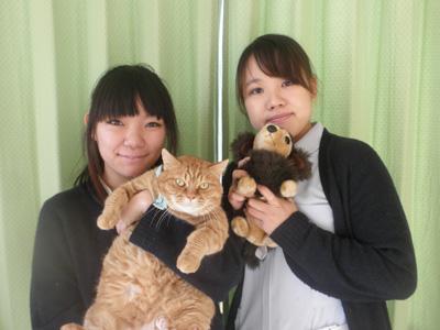 mitsuike-ah_article_23