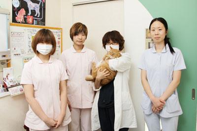 mitsuike-ah_article_6