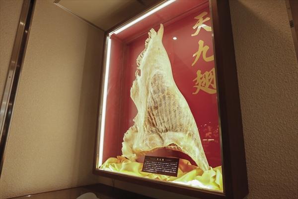 004china_photo