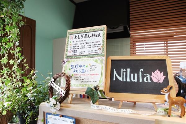 0012nilufa__article
