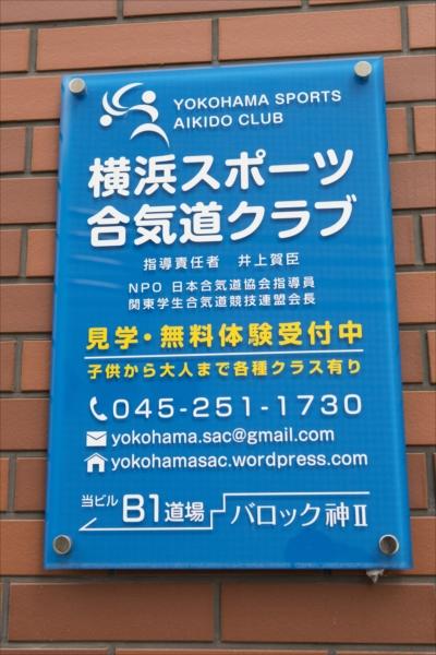 001sportsaikido_article