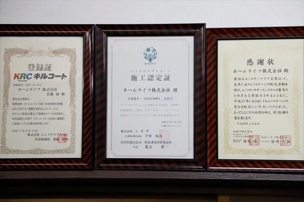 004homelefe_article