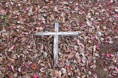 終戦後、山手の外国人墓地には連日のように混血嬰児の遺体が遺棄されたという。その数は数百になり埋葬場所に困ったほどと聞きます。当時の様子を調査して頂きたいです。(orcaさんのキニナル)