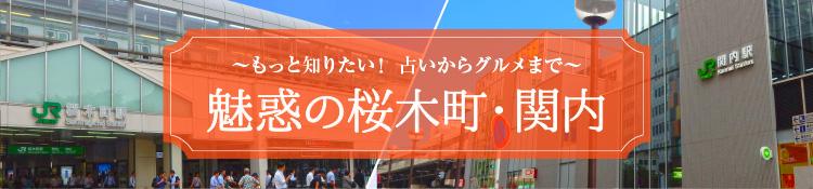 魅惑の桜木町・関内 〜もっと知りたい! 占いからグルメまで〜