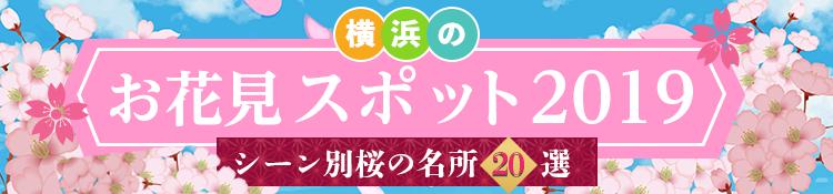 横浜の花見スポット2019 ~シーン別桜の名所20選~