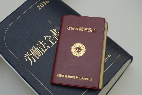 001yokoyama_article