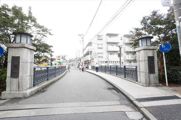 017shibasaki_article