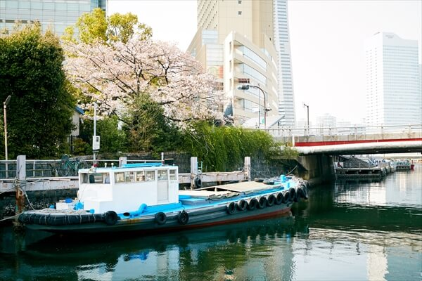 yakatasuzuyoshi-article052