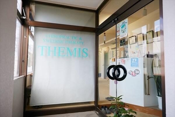 themis19-article008